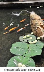 japanese koi fish japanese koi fish