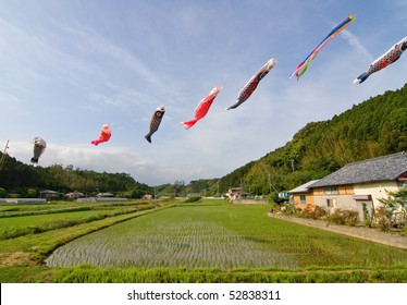 Japanese koi nobori wind socks blowing in the wind above a rice field.