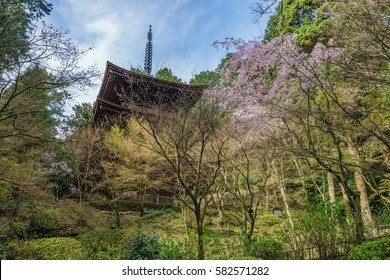 japanese landscape - kongorinji - aisho - shiga