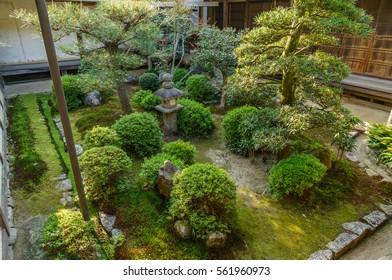japanese landscape - manshuin - kyoto