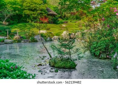 japanese landscape - taizoin - kyoto