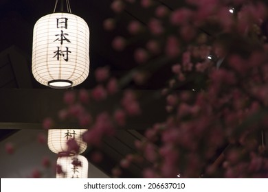 Japanese lantern in a temple