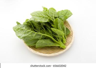 Japanese malabar spinach also known as Tsurumurasaki