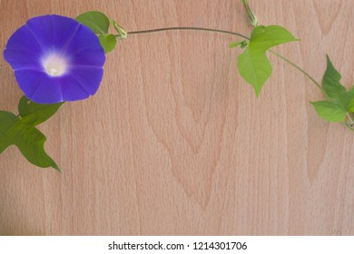 Japanese morning glory flower and wooden board