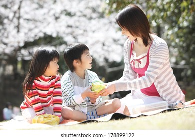 Japanese mother to pass the lunch to children under the cherry tree