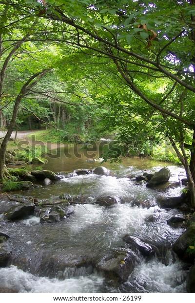 Japanese mountain stream, northern Japan.