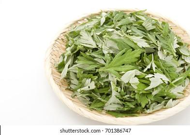 Japanese mugwort