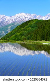 Japanese Northern Alps with terraced paddy field.This place is Aoni area.Hakuba Nagano Japan.Late May.