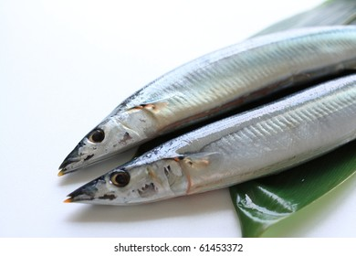 "Japanese ""Pacific saury"""