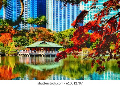 Japanese park, Shinagawa, Tokyo, Japan