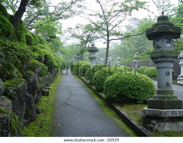 Japanese Park in Tokyo