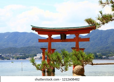Japanese Religious Monument and Pine Leaves