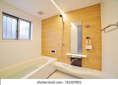 Japanese Residential Bathroom