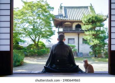 A Japanese Rinzai Buddhist priest is zazen with a cat