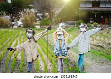 Japanese scarecrows protecting the Paddy field in Shirakawago historical Japanese Village of Gifu prefecture, Japan.