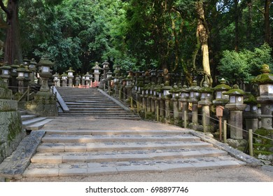 """The Japanese shrine in Nara, Japan. With many """"toro""""s. Picture was taken in August 2017."""