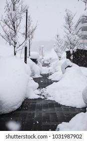 Japanese snow landscape