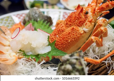 Japanese spiny lobster sashimi