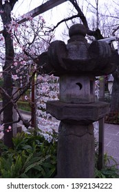 Japanese stone lantern and fortune drawing pater at shrine in tokyo, Japan.