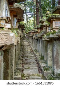 Japanese stone lanterns covered with moss in Nara, Japan.