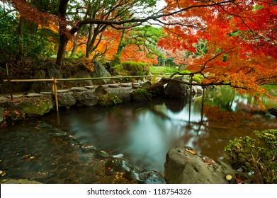 Japanese style public park and garden in autumn , koishikawa korakuen , tokyo , japan