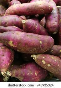 japanese sweet potato root. ingredient food