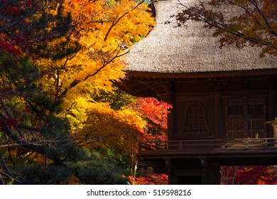 Japanese temple and autumn leaves