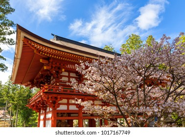 Japanese temple with blossom in Spring