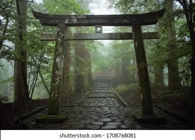 Japanese torii Shinto shrine gate in the forest, Nikko, Japan