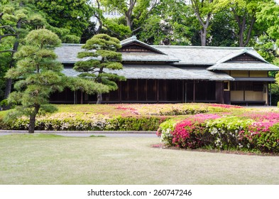 japanese traditional house in a park of Tokyo and flowers