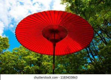 Japanese Traditional Oil-Paper Umbrella