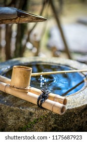 Japanese tsukubai in Japanese garden