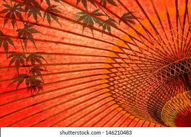 japanese umbrella and maple