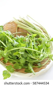 Japanese vegetable,Seri
