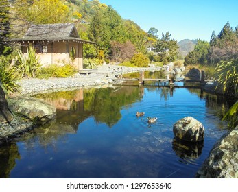 japanese wooden hut or house next to pond with calm water, surrounded by beautiful tranquil nature, part of Miyazu Japanese Garden, Nelson city, South Island, New Zealand, peace of mind concept