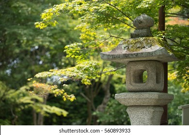 Japanese zen stone lantern with green foilage