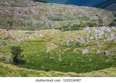 Japan's largest karst landscape in summer with limestone pinnacles rising above the grass near a featuristic large sinkhole in Akiyoshidai Quasi-National Park