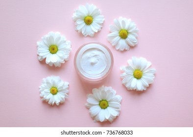 Jar of camomile face cream with camomile flowers with selective focus. Cosmetics pink background