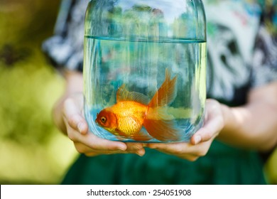 Jar with gold fish in hands of young girl