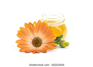 jar of honey and flower on white