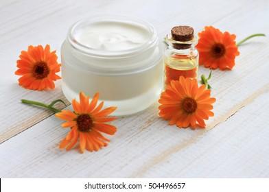 Jar of white body care cosmetic cream, herbal oil extract bottle, fresh calendula flowers.