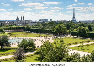 Jardin des Tuileries. Toned photo
