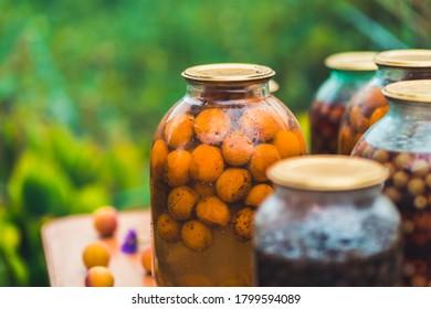 Kompot High Res Stock Images | Shutterstock