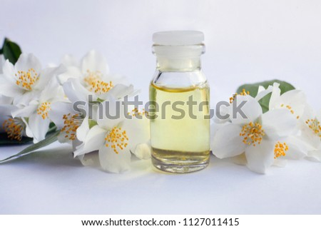 Jasmine Essential Oil Tincture Remedy Infusion Stock Photo Edit Now