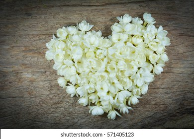 Jasmine flower on the old colorful background,heart shape