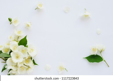 Jasmine flowers frame top view, flat lay.