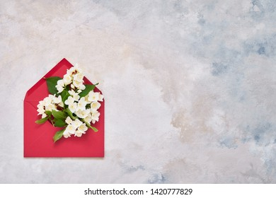 Jasmine, Philadelphus or mock-orange flowers in red envelope on colorful background. Flat lay of Birhday, Mothers Day, bachelorette, Wedding concept. Copy space, top view.