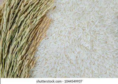 Jasmine rice is the background.