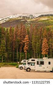 Jasper National Park / Alberta / Canada - June 11, 2018: camper vans, RVs, motorhomes, park with pine forest and Rocky Mountains on background,  in Jasper National Park, Alberta. Canadian landscape.