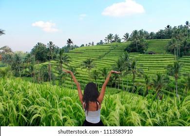 Jatiluwih rice field, Bali